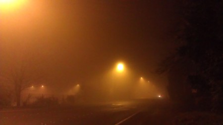 Night in Bellevue
