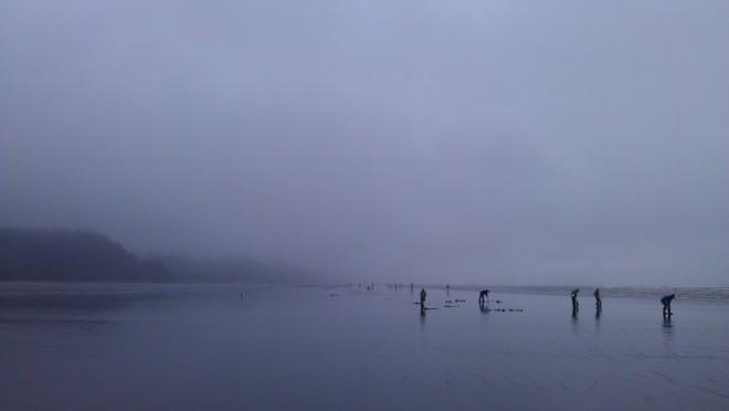 Pacific Beach WA