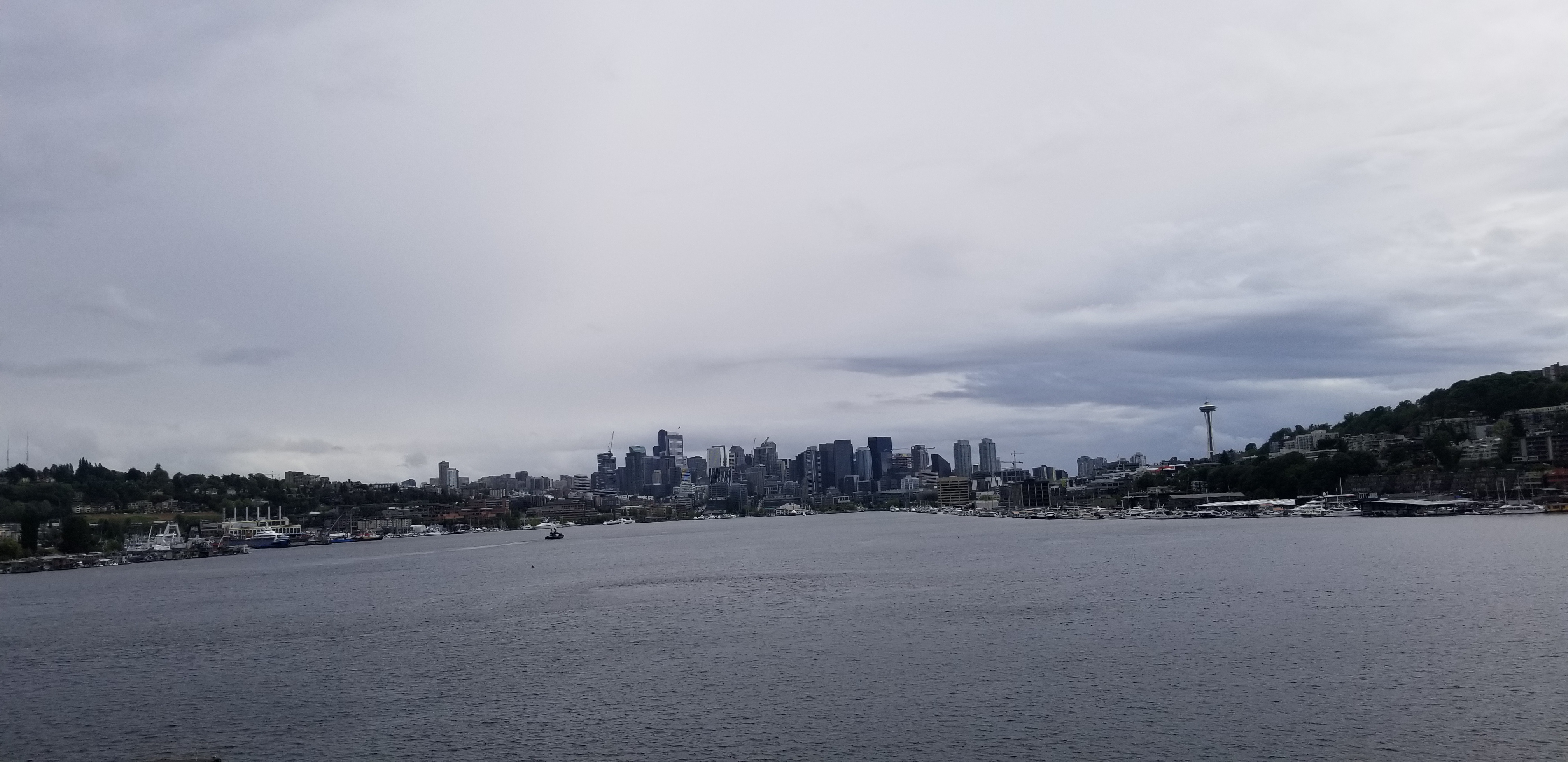 Lake Union From Gas Works Park
